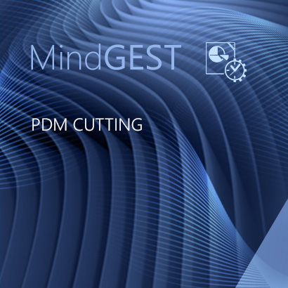 PDM Cutting (Inc. 1 PDM Explorer license)